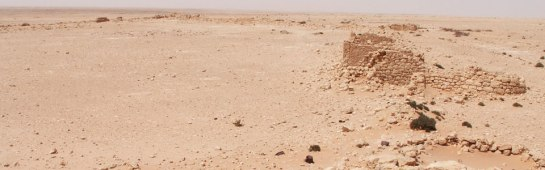the_war_in_the_desert_libya